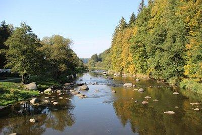 Řeka Sázava fotografovaná z lanového mostu - pohled směrem k Ledči nad Sázavou