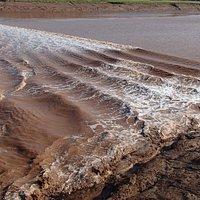 tidal bore - Aug 26