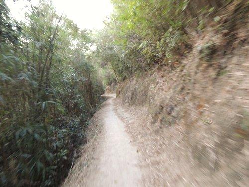 Tai Lam Reservoir trail.