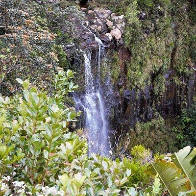 The Alexandra Falls