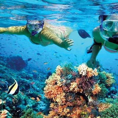snorkeling at Isla Mujeres