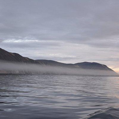 туман в бухте