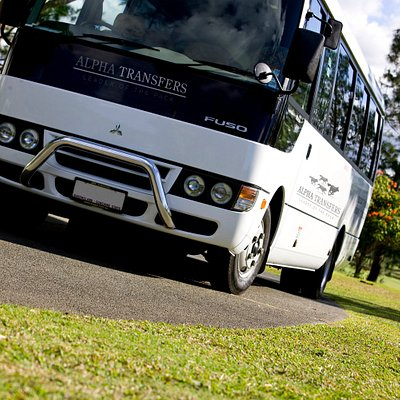 Book one of our coaches for a group transfer