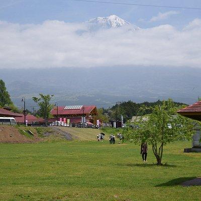 富士山とみどりが美しい