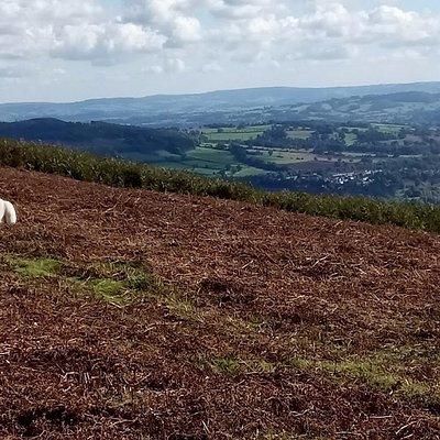 A view towards Abergavenny