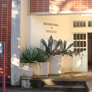 This is the museum entrance