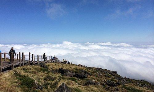 Above the clouds, on Seongpanak Trail, Hallasan, Jeju-do