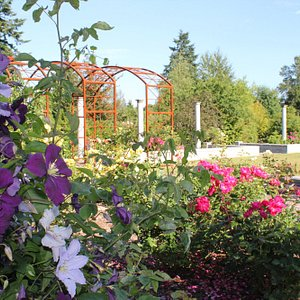 Highline SeaTac Botanical Garden