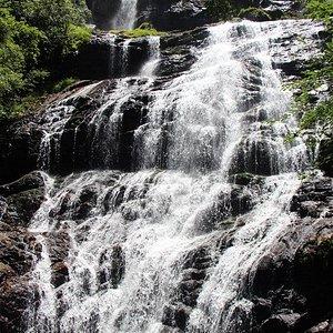 Cachoeira Braço Esquerdo.