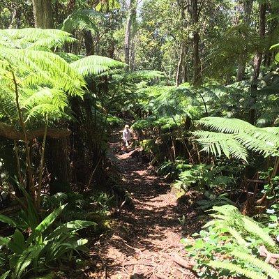 Makahi Trail