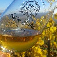 Vins et Crémants d'Alsace Antoine Ehrhart - Wettolsheim