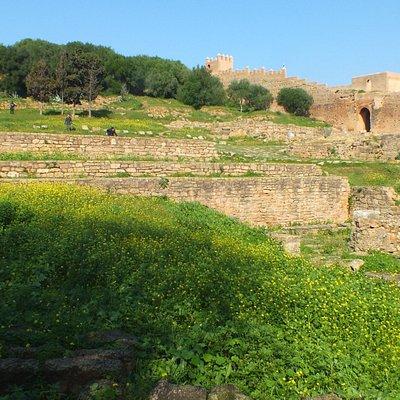 Exotic Gardens Rabat