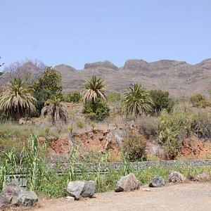 Widok na wąwóz Barranco de Fataga