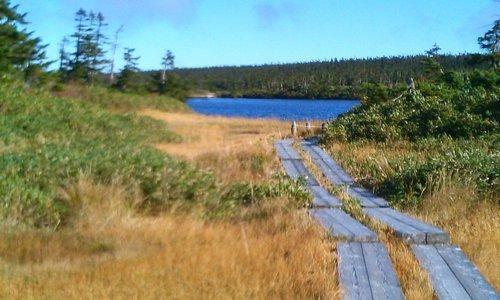 木道を歩いて一周できます