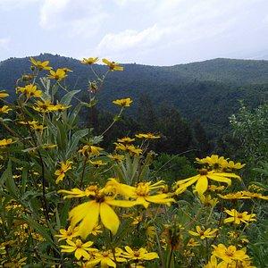 Yerer Mountain on September