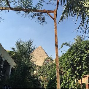 This is our garden ... the view could not be better. Pyramids !!