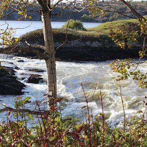 Another photo of the reversing falls