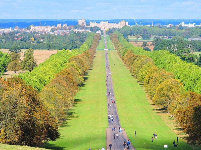 Walk in Great Park