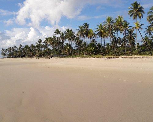 Caminhada pela praia, logo pela manhã