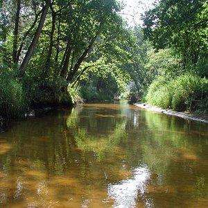 Riviertje de Dinkel, Lutterzand, bij Kribbenbrug, Paviljoen Lutterzand, Twente, Overijssel