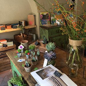 vicolo dei lavandai vicolo bugande milano piante kokedama complementi arredo idee regalo cartole
