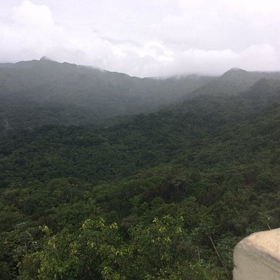 Photo taken from the Yokahu Observation Tower