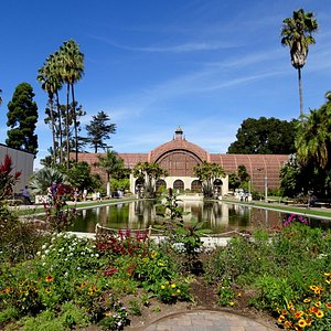Lily pond in Balboa Park