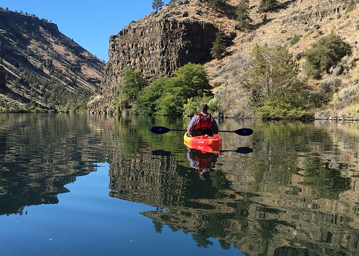 New Guided Kayak Tours at The Cove