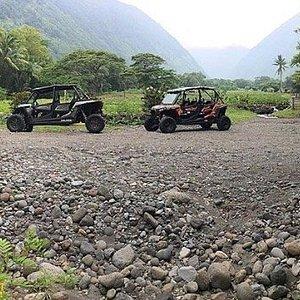 Ride our Open-Air Polaris ATV Buggy's on a working Kalo (taro) farm