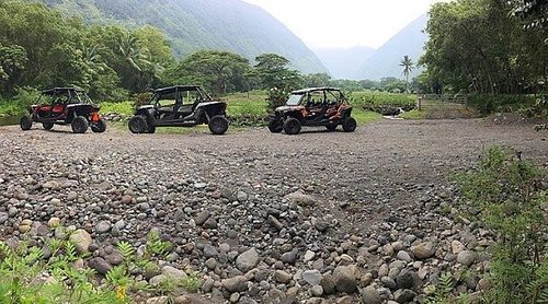 Ride our Open-Air Polaris ATV Buggy's on a working Kalo (taro) farm