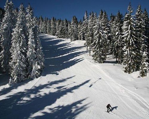 Transfers from Sofia Airport to Pamporovo Ski Resort