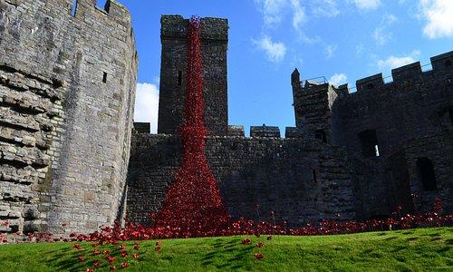 Caernarfon castle, good bus service from Porthmadog