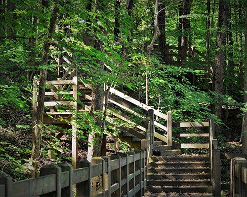 Fall Creek Trail