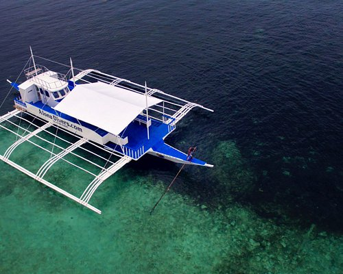 Alona divers Brand new Safari Dive boat 😀 We have the best dive boat in panglao island