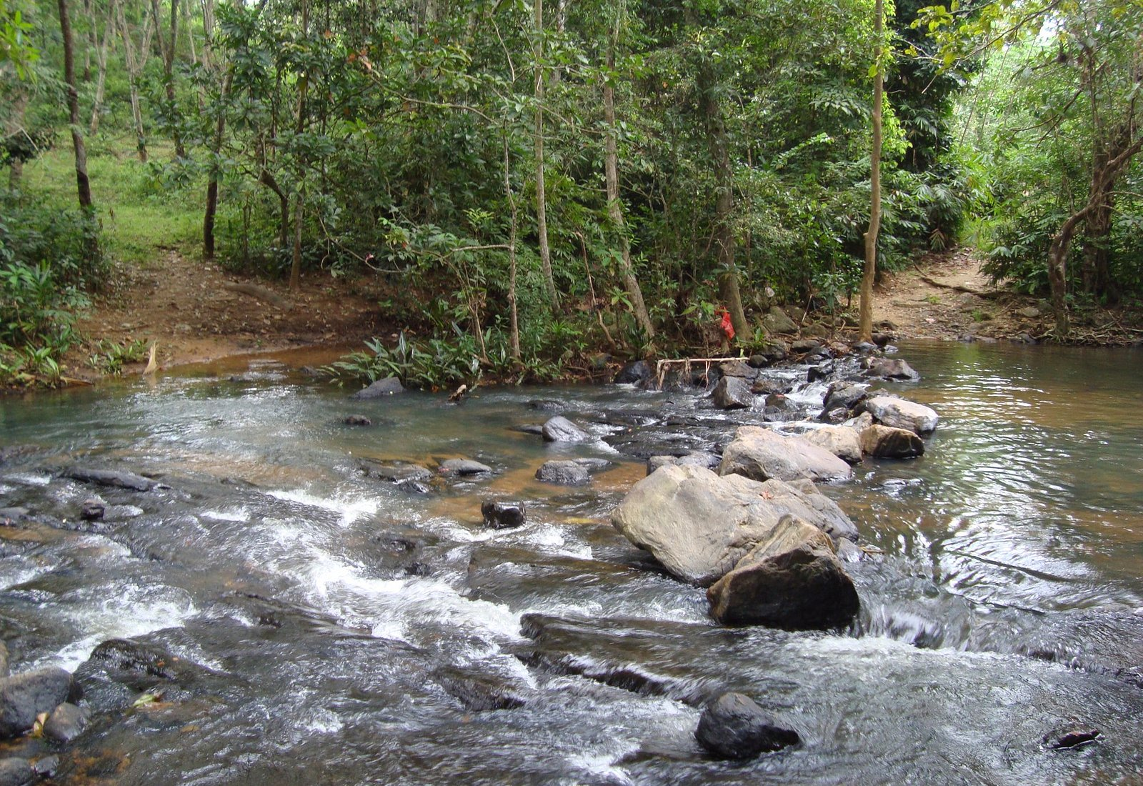 photo of down stream....there is a nice small waterfall in the upstream