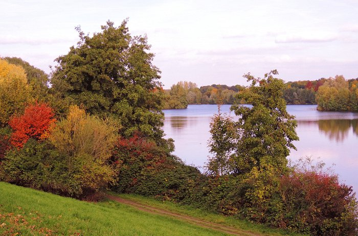 Jesien na Elfrather See.