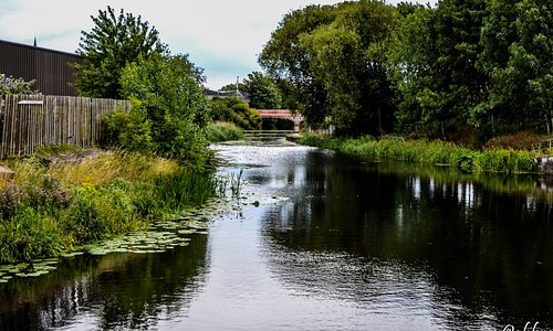 River Soar