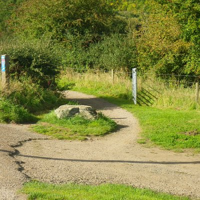 Peregrine Trail.
