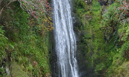 Glenevin Waterfall at the end of the path