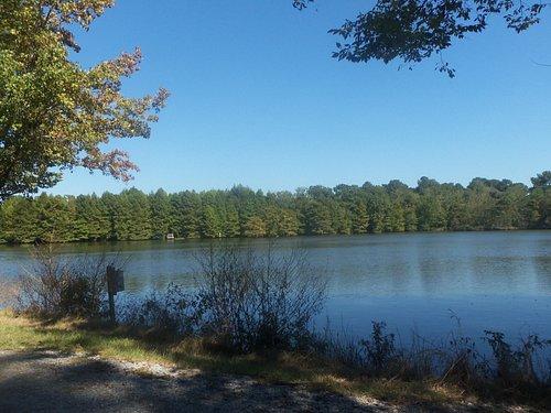 lake by a picnic shelter.