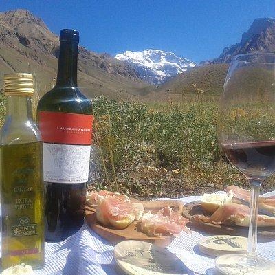 Degustaçao de vinhos a os pes de Aconcagua