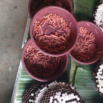 Interesting meat for sale in Naga supermarket