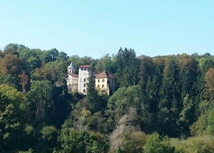 Dvorac Bosilje/ Stari grad Bosiljevo