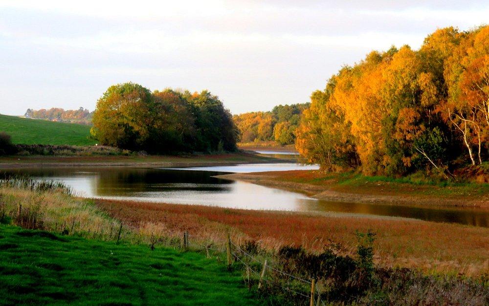 Autumn at Staunton
