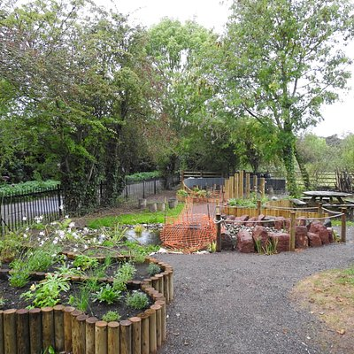 The recently landscaped RSPB gardens