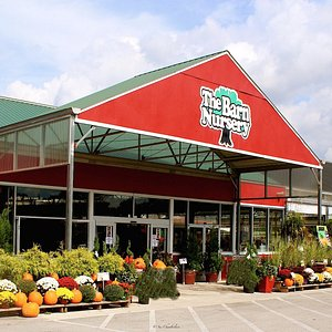 The Barn Nursery: greenhouse, gift shop, boutique, trees & shrubs, pottery outlet