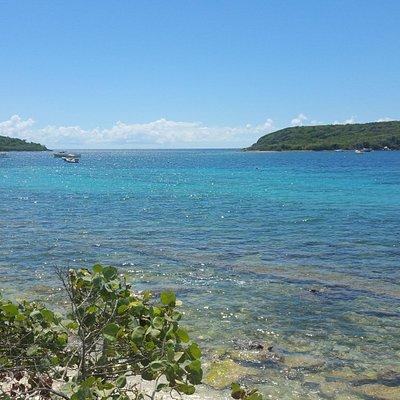 View from the boardwalk in Esperanza