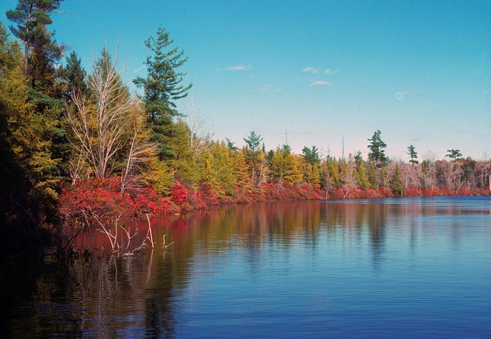 The beautify of Lake Lacawac and it's hiking trails