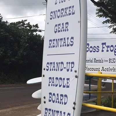 Boss Frogs Rentals for everything plus tours