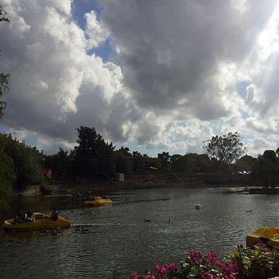 אגם חי קיבוץ יראון